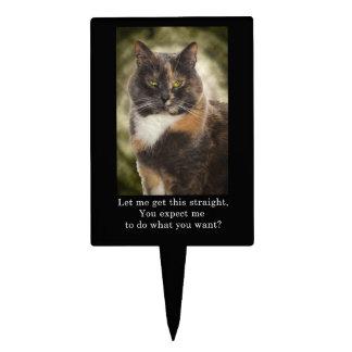 Smug Kitty - Do What You Want? Cake Picks