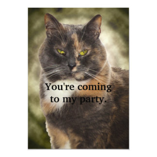 Smug Kitty - Do What You Want? 5x7 Paper Invitation Card