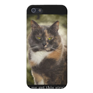 Smug Kitty - Do What You Want? Cover For iPhone 5