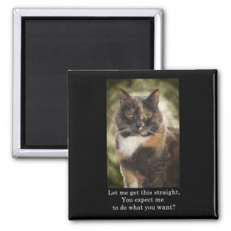 Smug Kitty - Do What You Want? Magnets