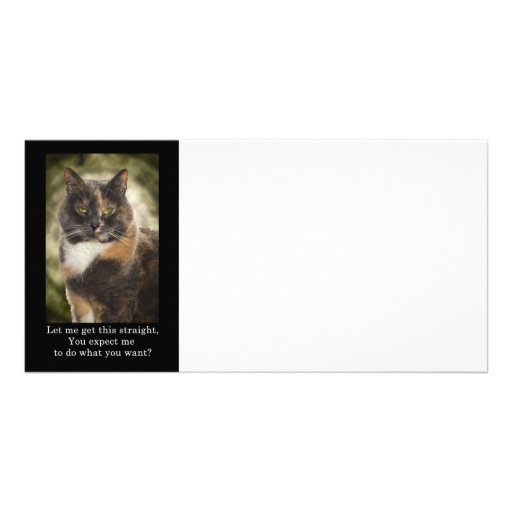 Smug Kitty - Do What You Want? Personalized Photo Card