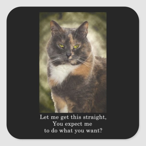 Smug Kitty - Do What You Want? Square Sticker