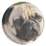 Smug Pug Plate