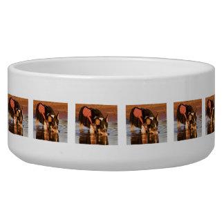 Snack Rescue Bowl