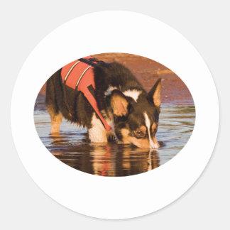 Snack Rescue Classic Round Sticker