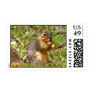Snackin' Postage Stamps