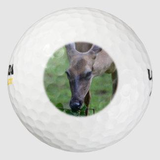 Snacking Deer Pack Of Golf Balls