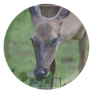 Snacking Deer Dinner Plates