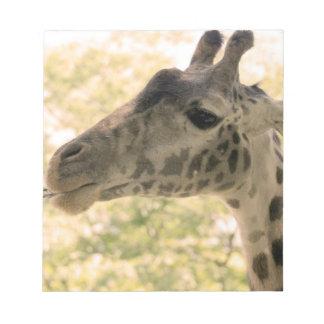 Snacking Giraffe Note Pad