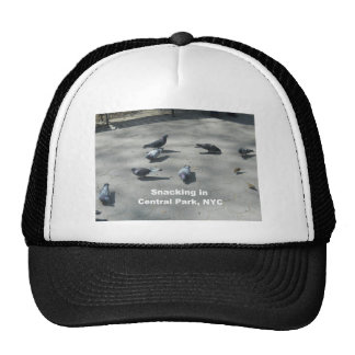 Snacking in Central Park, NYC Trucker Hat