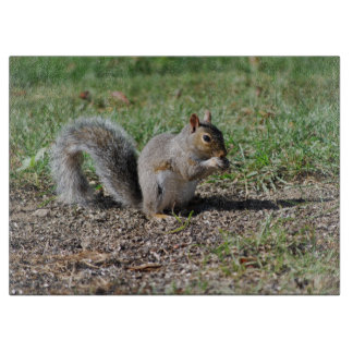 Snacking Squirrel Cutting Boards