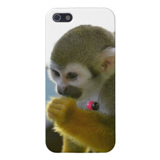 Snacking Squirrel Monkey iPhone 5/5S Case