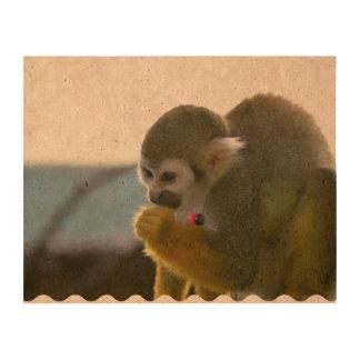 Snacking Squirrel Monkey Photo Cork Paper