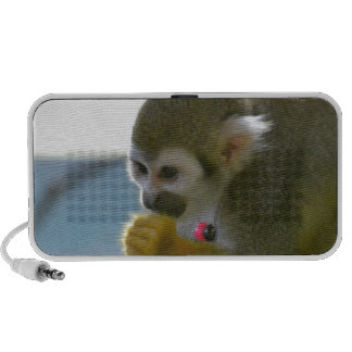 Snacking Squirrel Monkey iPhone Speakers