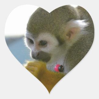 Snacking Squirrel Monkey Sticker