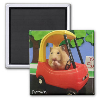 Snacks on the Road 2 Inch Square Magnet