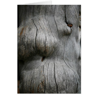 Snag wood texture background card