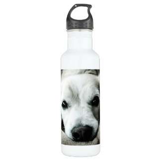 Snaggle Nose Water Bottle (24 oz), White