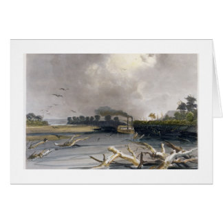 Snags (sunken trees) on the Missouri, plate 6 from Card