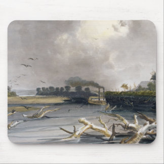 Snags (sunken trees) on the Missouri, plate 6 from Mouse Pad