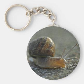 Snail 1 Keychain