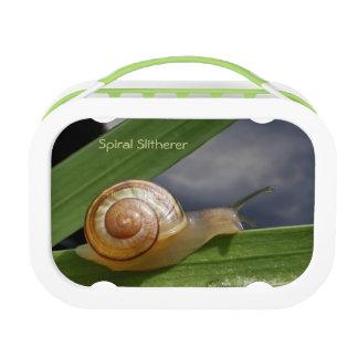 Snail 96 ~ Lunch box