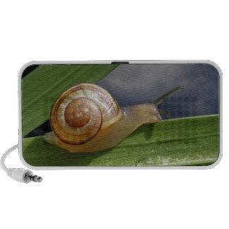 Snail 96 speaker