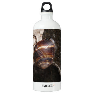 Snail Aluminum Water Bottle