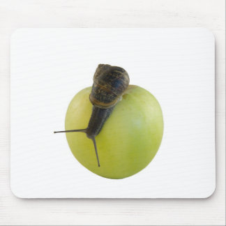 Snail and apple mouse pad