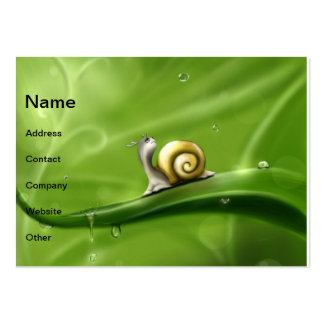 Snail and rain drops business cards