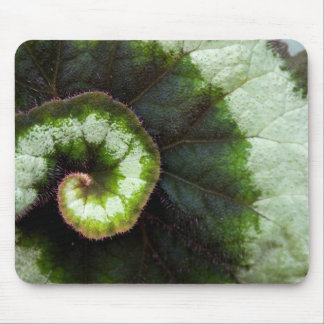 Snail Begonia Leaf Mouse Pad