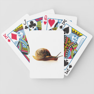 snail bicycle playing cards
