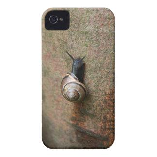 Snail blackberry bold case