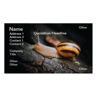 Snail Business Cards