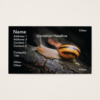 Snail Business Card