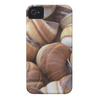 Snail iPhone 4 Cases