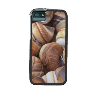Snail Cover For iPhone 5/5S