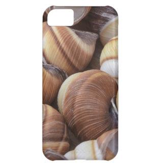 Snail iPhone 5C Case