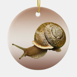 Snail Ceramic Ornament