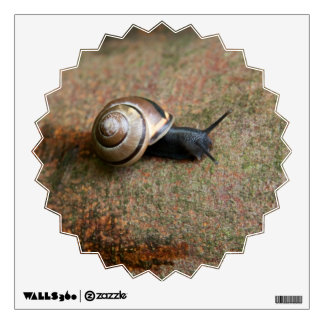Snail decorative star bust Wall Decal