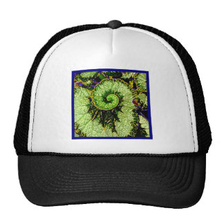 Snail Escargot Begonia Leaf by Sharles Trucker Hat