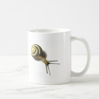 SNAIL FROM JUNGLEWALK.COM COFFEE MUG
