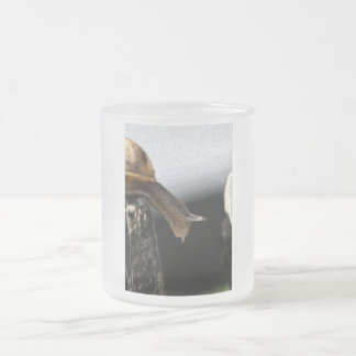Snail Frosted Glass Coffee Mug