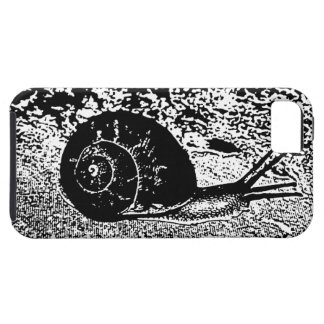 Snail in Black and White iPhone SE/5/5s Case