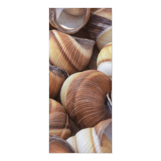 Snail Personalized Announcements