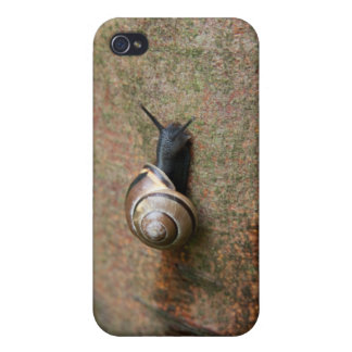 Snail Cases For iPhone 4