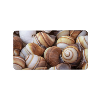 Snail Personalized Address Labels