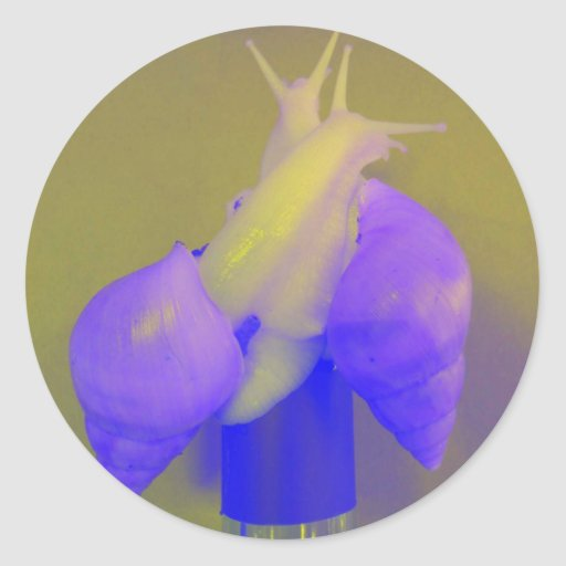 Snail love Purple Round Stickers