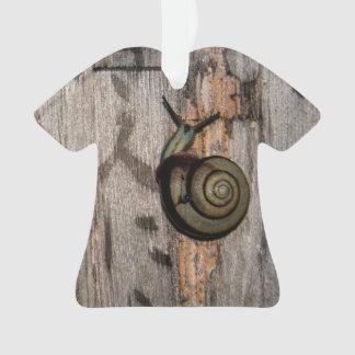 Snail mail Escargot en caligrafía asiática