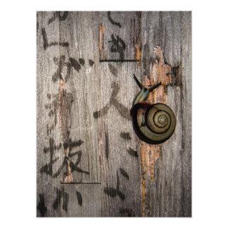 Snail mail Escargot en caligrafía asiática Impresión Fotográfica